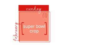 Super_bowl_crop