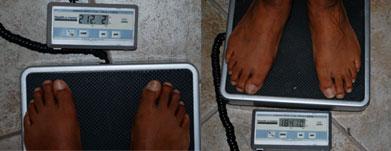 Wendell-weight