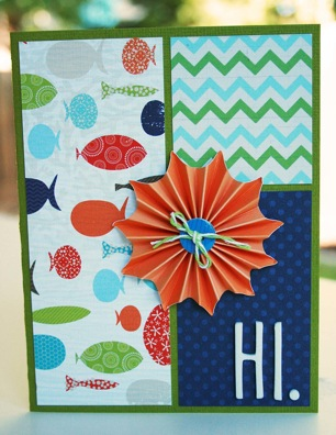 Bj AUG KIT Hi card