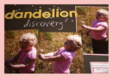 Dandelion_discoverydetail3
